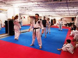 Photos taekwondo 2017 (17)