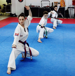 Photos taekwondo 2017 (7)