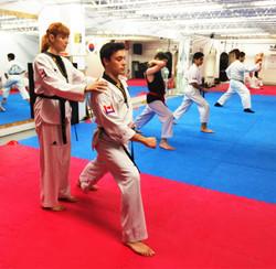 Photos taekwondo 2017 (21)