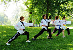 Photos taekwondo 2017 (19)