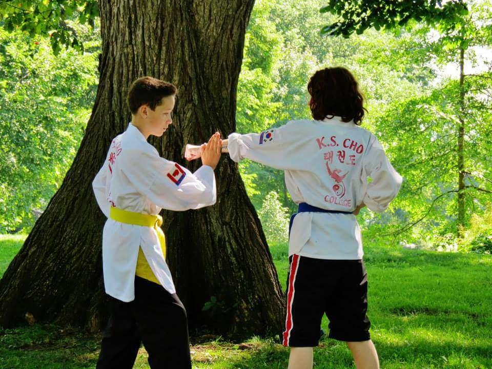 Photos taekwondo 2017 (6)