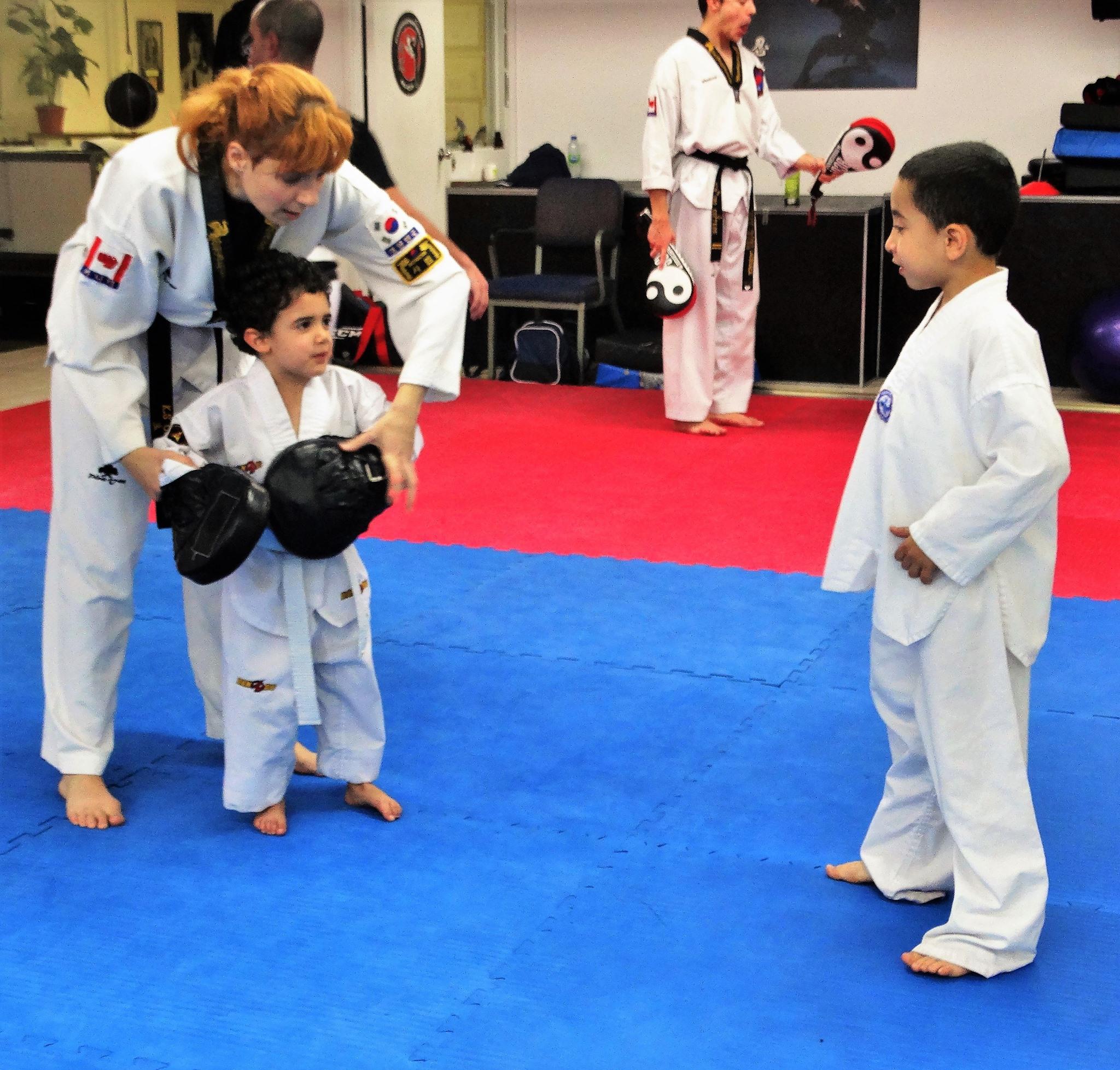 Photos taekwondo 2017 (12)