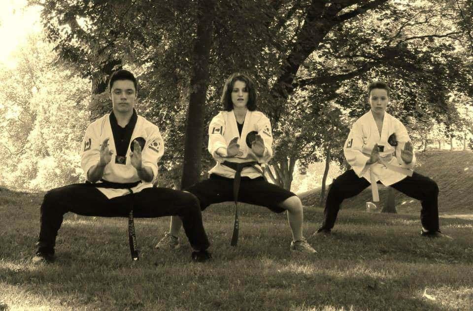 Photos taekwondo 2017 (4)