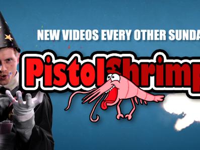 PISTOLSHRIMPS - Gullsnutten (Norwegian YouTube Awards)