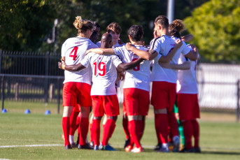 NPL Rd 12 Win Highlights Now Available