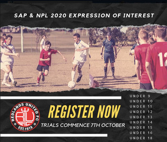 SAP & NPL 2020 Expression of Interest