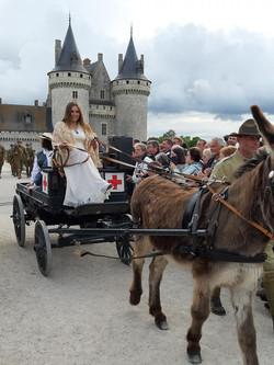 0006 Chateau de Sully sur Loire  79TH ME