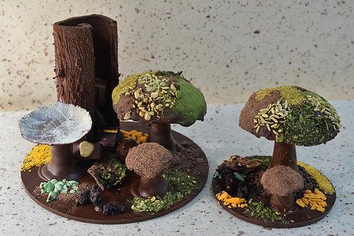 Composition champignons