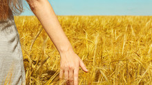 Redag Crop Protection sows the seeds of growth