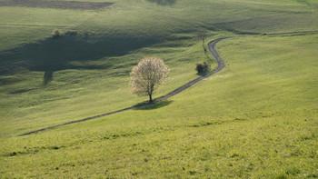 Landschaft im südlichen Schwarzwald