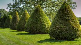 In Parks und Gärten I
