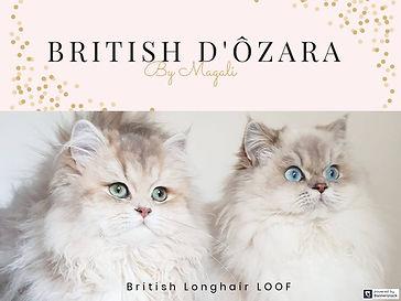 British d'Ôzara Bannière[3010].jpg