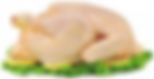 poulet casher en Mabella
