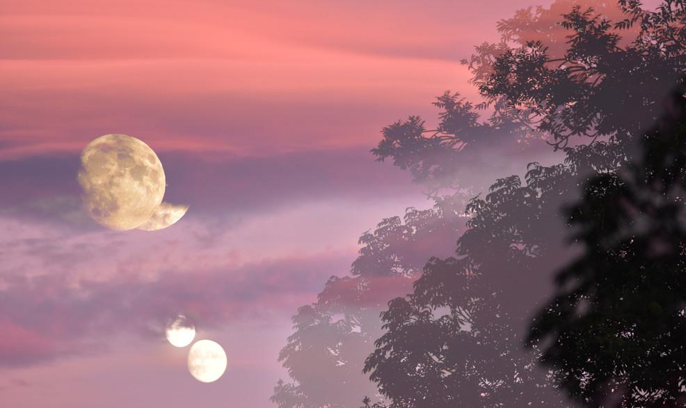 Lunes.jpg