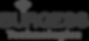 burgesstec_logo.png
