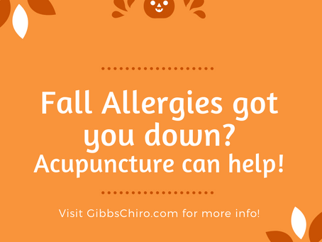 Pumpkin Spice Lattes and Fall Allergies