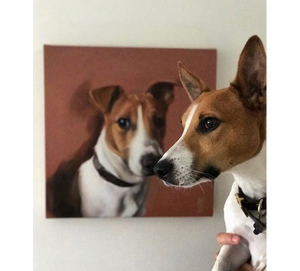 Jack Russell Terrier Dog Portrait