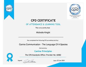 CP CPD.jpg
