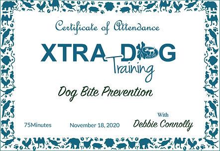 certificate Debbie Connolly.jpg