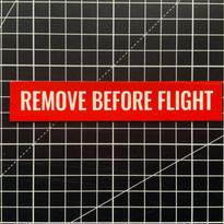 Remove Before Flight Vinyl Magnet