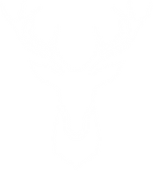 White Logo. png.png