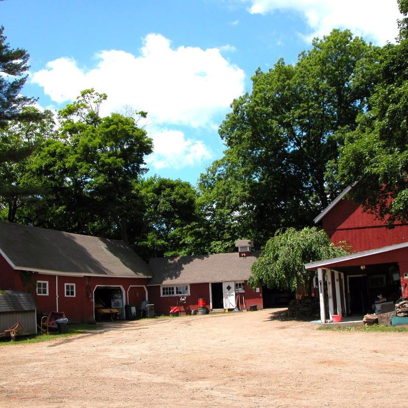 Barnyard in summer