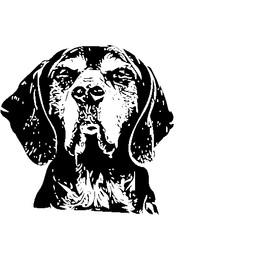 Augie Dog.jpg