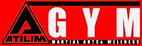 Ankara Wing Chun Escrima kick boks fitness bağlıca kung fu savunma sanatları