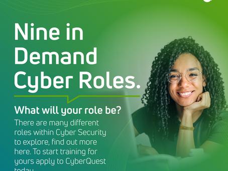Cyber Job Roles
