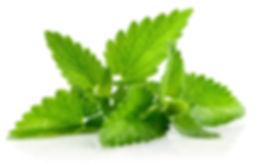 tulsa scent branding
