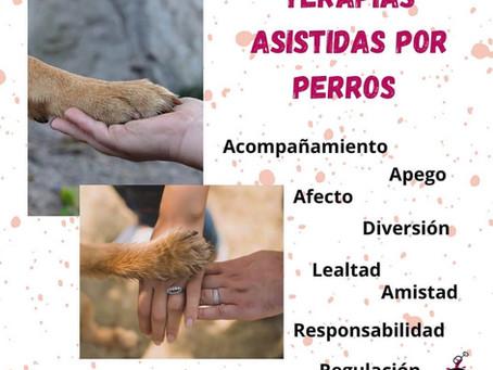 Terapias asistidas por perros