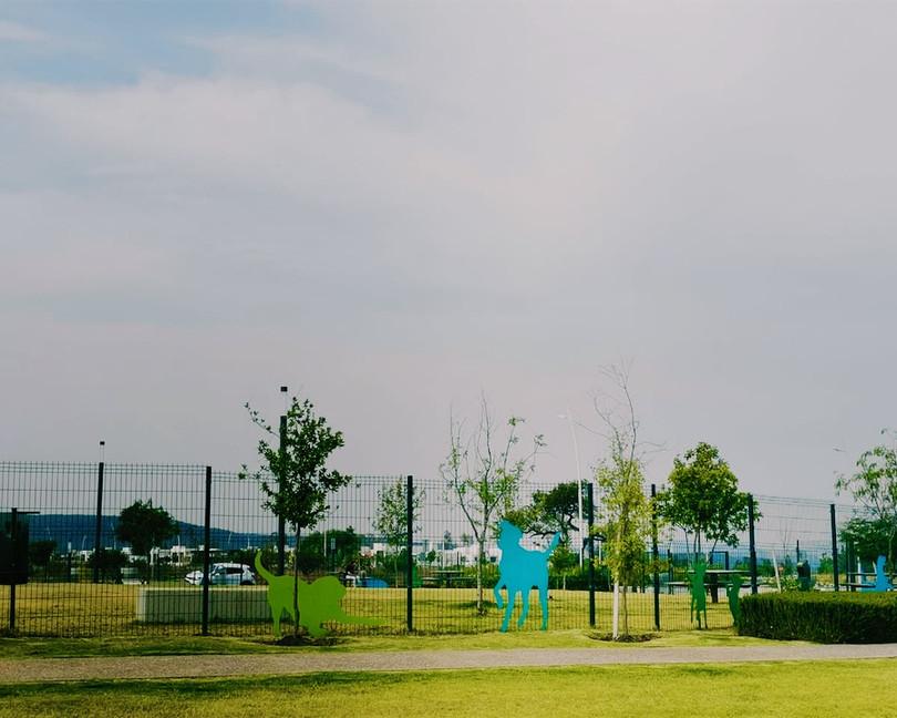 Parque de perros Zakia Querétaro
