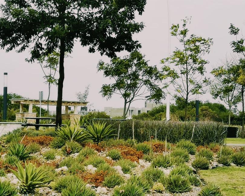 Parque Zakia Querétaro