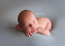 Binghamton Newborn Photographer