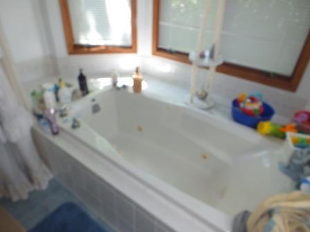 11 - Master Whirlpool Tub