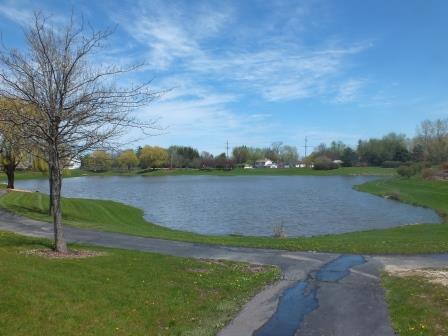 11 - Park Pond