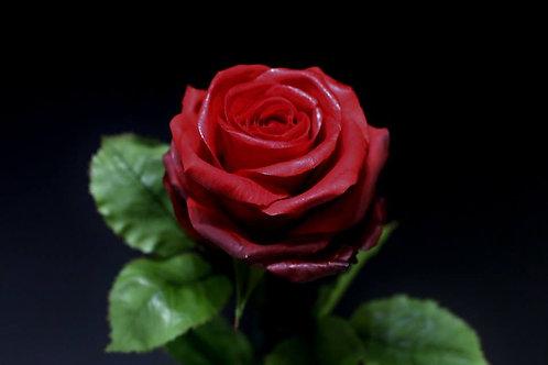 1-Tages Zuckerblumenkurs, Rose. 12.09.2020