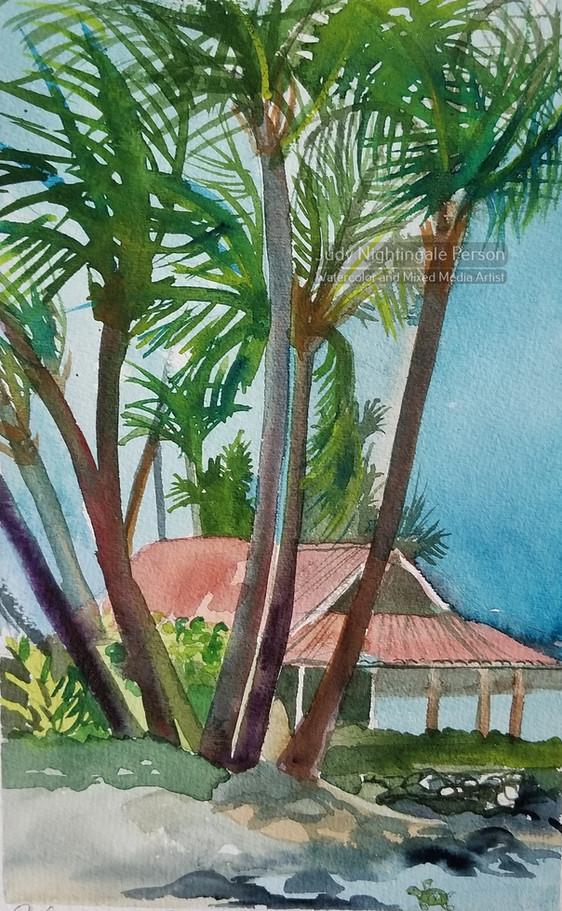 Kahalua Palms