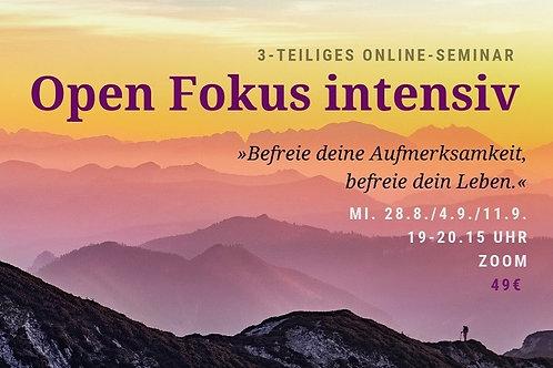 """Aufzeichnung 3-teiliges Webinar """"Open Fokus intensiv"""""""