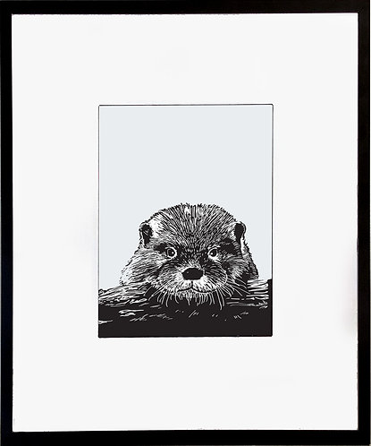 Otter Poster 600 X 480 X 12mm