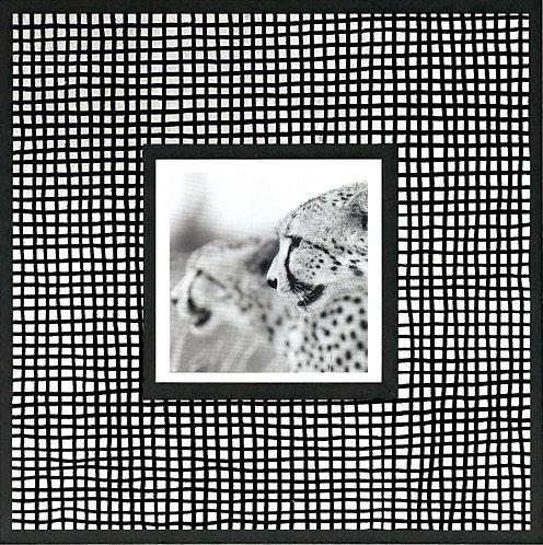 Linear Gingham_Cheetah