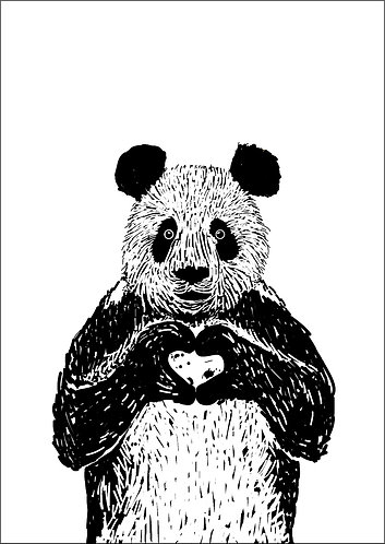 Panda Line Illustration