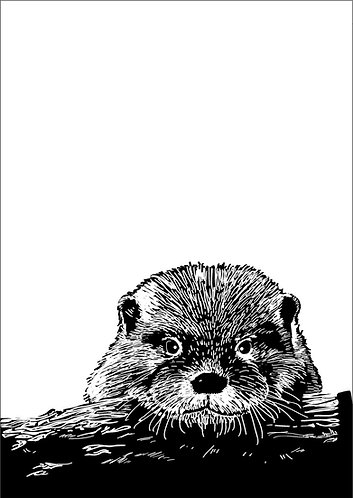 Otter Line Illustration