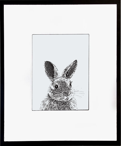 Rabbit Poster 600 X 480 X 12mm