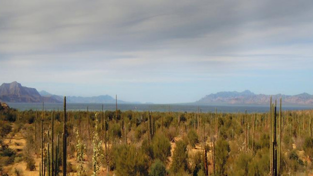 Una vista a la Baja