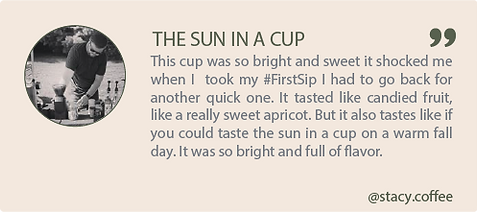 the sun in a cup. This cup was so bring and sweet it shocked me when I took my #FirstSip I had to go back for another quick one. It tasted like candied fruit, like a really sweet apricot. But it also tastes like if you could taste the sun in a cup on a warm fall day. It was so bring and full of flavor