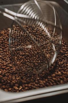 specialty coffee Roasting42.JPG
