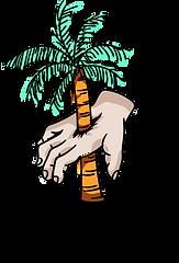 palmacoffeelogo.png