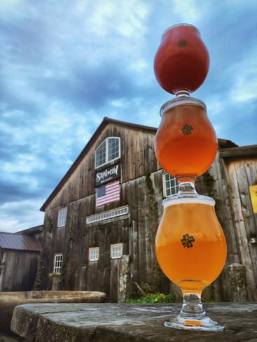 Farmgirl Blueberry Sour & Cherry-bomb Saison