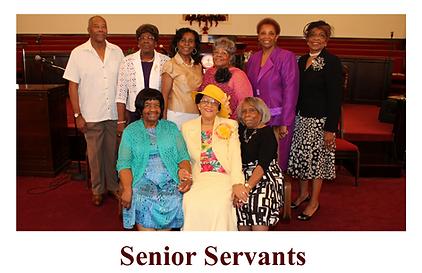 Senior Servants.png
